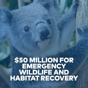 Initial commitment of $50m for emergency wildlife and habitat recovery