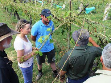 Seasonal workers expanding to greener pastures