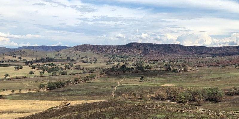 Jingellic Hub wins more bushfire resilience funding